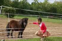 Még csak egyedül... / Only with one pony