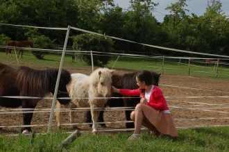 Egyre többen vagyunk... / With three ponies...