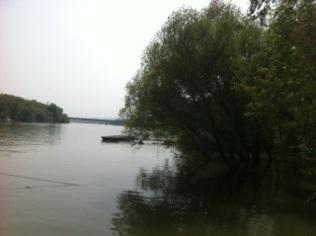 Duna / Danube