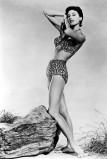 1955-ben a magasderekú, nyakbakötős, leopárdmintás bikini a menő / In 1955 the leopard patterned high waisted shorts are stylish